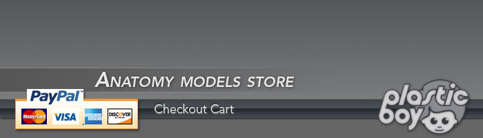 Plasticboy Models Store
